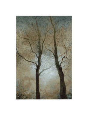 A picture of 'Trees in the Mist'