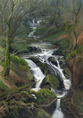 A picture of 'Falls at Nant Gwernol'