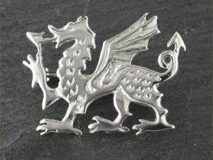 A picture of 'Silver Large Dragon Brooch'