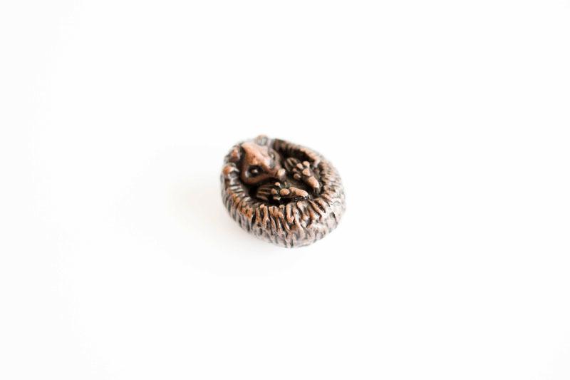A picture of 'Miniature Bronze Hedgehog''